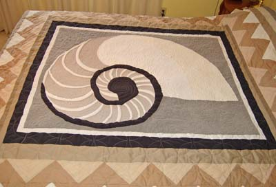 Closeup quilted Chambered Nautilus
